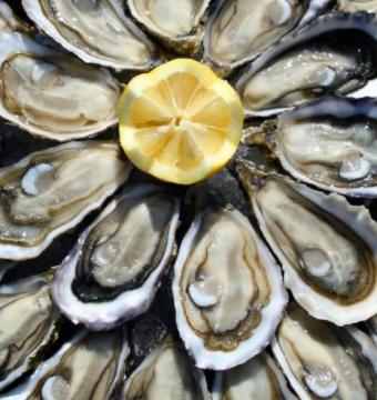 6 Koude Zeeuwse platte oester OOOOO